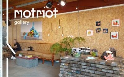 MotMot gallery